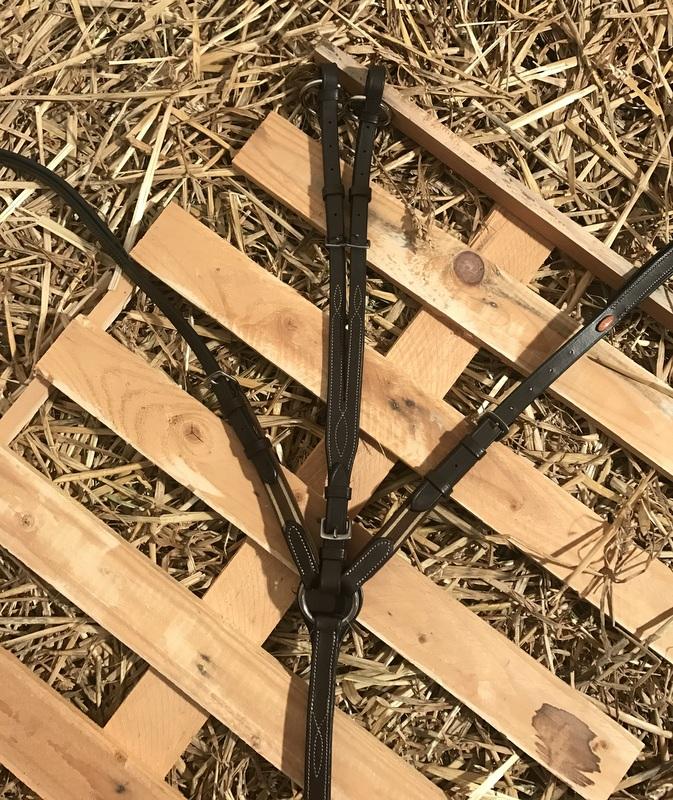 Collier élastique avec martingale - Chataigne